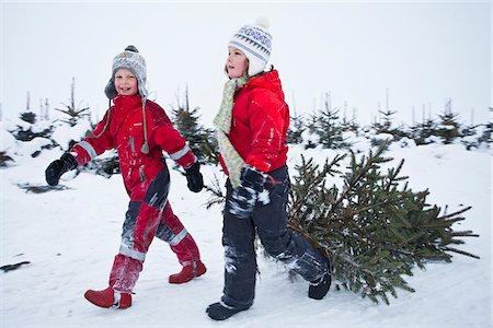 snow christmas tree white - Children pulling Christmas tree Stock Photo - Premium Royalty-Free, Code: 698-05958926
