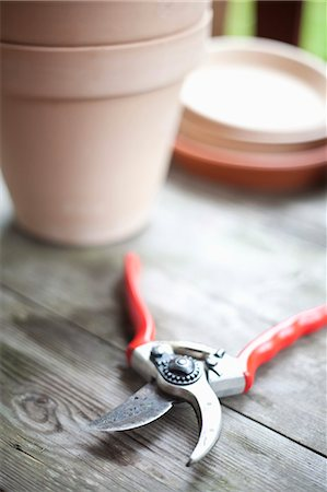plant (botanical) - Close-up of a pruning shears with pot on wood Stock Photo - Premium Royalty-Free, Code: 698-06374599