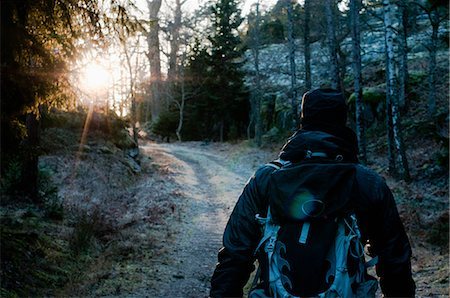 Rear view of a mid adult man hiking in forest at dawn Stock Photo - Premium Royalty-Free, Code: 698-06374707
