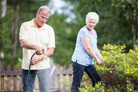 Senior woman looking at man watering plants in garden Stock Photo - Premium Royalty-Free, Code: 698-06374951