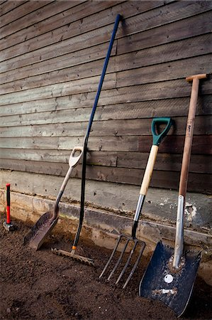 Group of gardening tools against wooden wall Stock Photo - Premium Royalty-Free, Code: 698-06375209