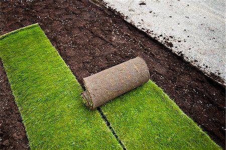 New grass turfs in formal garden Stock Photo - Premium Royalty-Free, Code: 698-06375475