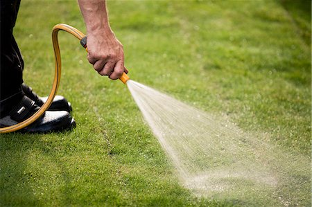 Cropped image of man watering grass turf in lawn Stock Photo - Premium Royalty-Free, Code: 698-06375481