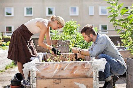 Young Caucasian couple gardening at urban garden Stock Photo - Premium Royalty-Free, Code: 698-06444214