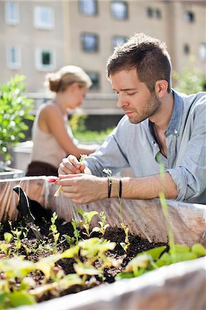 stockholm - Young man gardening with woman in the background Stock Photo - Premium Royalty-Free, Code: 698-06444215