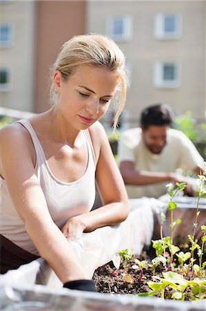 Young woman gardening at urban garden with man in the background Stock Photo - Premium Royalty-Free, Code: 698-06444219