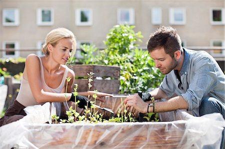 Young couple gardening at urban garden Stock Photo - Premium Royalty-Free, Code: 698-06444212