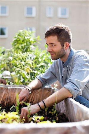Young man gardening at urban garden Stock Photo - Premium Royalty-Free, Code: 698-06444220