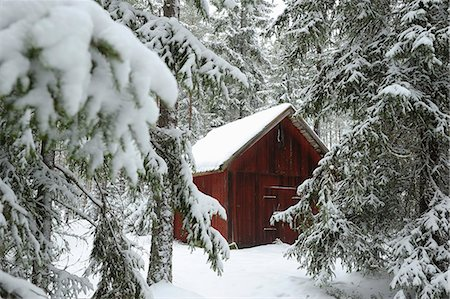 snow covered trees - Snow covered hut and trees in winter Stock Photo - Premium Royalty-Free, Code: 698-06966262