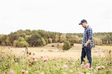 Side view of mid adult farmer walking on field Stock Photo - Premium Royalty-Free, Code: 698-07439596