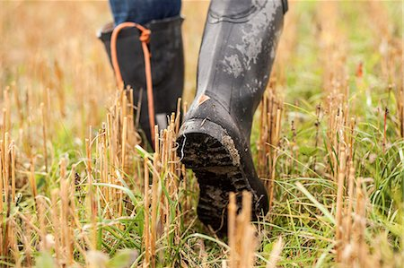 Low section of farmer walking in field Stock Photo - Premium Royalty-Free, Code: 698-07439598