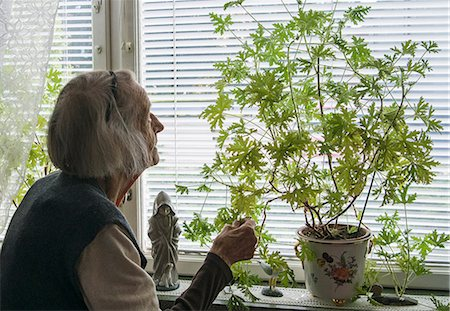 Senior woman looking at potted plant on window sill at home Stock Photo - Premium Royalty-Free, Code: 698-07587825