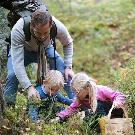 selecting - Father with children picking mushrooms in field Stock Photo - Premium Royalty-Free, Code: 698-07635205