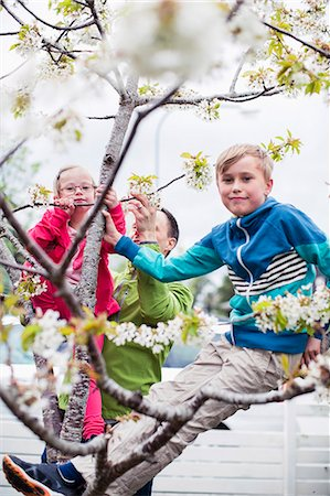 Portrait of siblings on tree branch with father standing in yard Stock Photo - Premium Royalty-Free, Code: 698-07635694