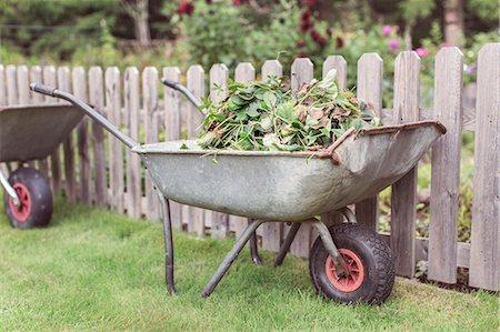 Wheelbarrow full of weeds at farm Stock Photo - Premium Royalty-Free, Code: 698-08007926