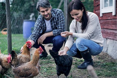 Happy couple feeding hens at poultry farm Stock Photo - Premium Royalty-Free, Code: 698-08007944