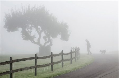 Man walking with dog at countryside in foggy weather Stock Photo - Premium Royalty-Free, Code: 698-08008028