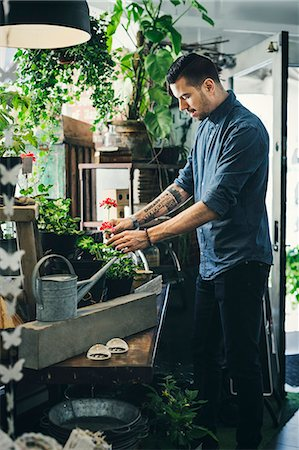 florist - Mid adult man working in plant shop Stock Photo - Premium Royalty-Free, Code: 698-08226484