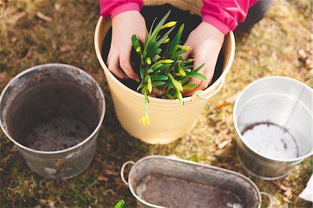 plant (botanical) - Cropped image of girl planting pot at yard Stock Photo - Premium Royalty-Free, Code: 698-08226532