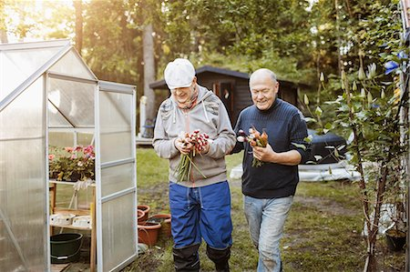 Smiling gay couple holding fresh root vegetables while walking at garden Stock Photo - Premium Royalty-Free, Code: 698-08330887
