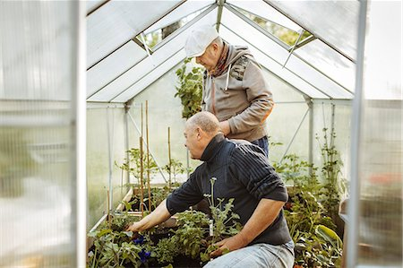 picture - Gay men gardening in small greenhouse Stock Photo - Premium Royalty-Free, Code: 698-08330894