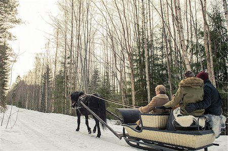 People enjoying horse-drawn sled ride by trees Stock Photo - Premium Royalty-Free, Code: 698-08393362