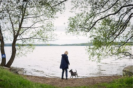 Rear view of senior woman standing with dog at lakeshore Stock Photo - Premium Royalty-Free, Code: 698-08434342