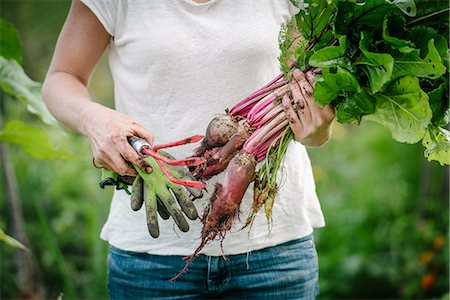 farmhand (female) - Midsection of woman holding root vegetables while standing at farm Stock Photo - Premium Royalty-Free, Code: 698-08803487