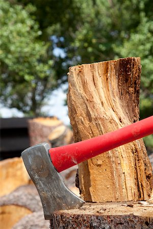 Close-up of axe wedged into tree stump Stock Photo - Premium Royalty-Free, Code: 693-05794376