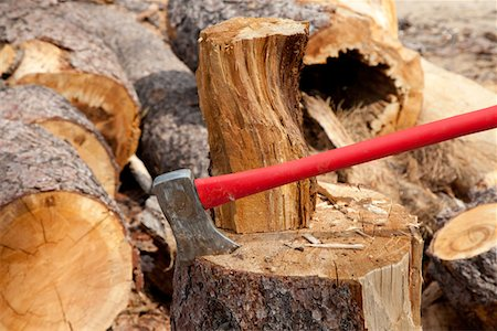 forestry - An axe wedged into a tree stump Stock Photo - Premium Royalty-Free, Code: 693-05794377
