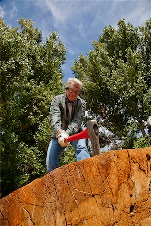 forestry - Low angle view of man chopping wood Stock Photo - Premium Royalty-Free, Code: 693-05794396