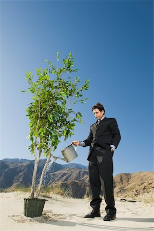 Businessman Watering Tree in the Desert Stock Photo - Premium Royalty-Free, Code: 693-06021777