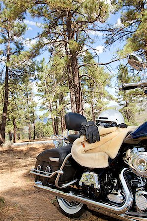 Motorcycle with riding gloves and jacket in forest setting Stock Photo - Premium Royalty-Free, Code: 693-06667827