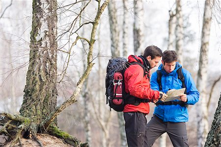 Male backpackers reading map in forest Stock Photo - Premium Royalty-Free, Code: 693-07672999