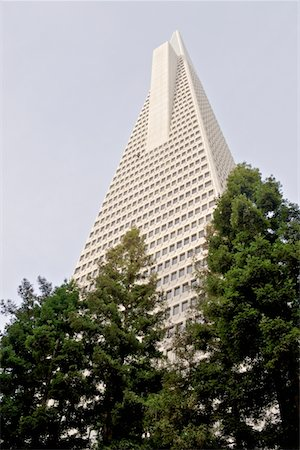 Low angle view of the Transamerica Pyramid, San Francisco designed by William Pereira Stock Photo - Premium Royalty-Free, Code: 693-03474431