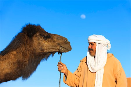 Man and Camel Looking at Each Other Stock Photo - Rights-Managed, Code: 700-04163443