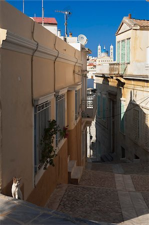 Cat on Steep Street, Syros, Cyclades Islands, Greece Stock Photo - Rights-Managed, Code: 700-04425042