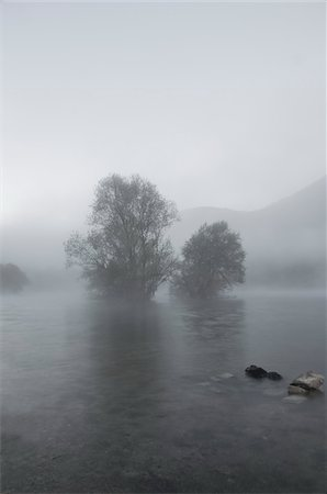 dreamy - Lake and Trees in Fog, Lago del Turano, Province of Rieti, Lazio, Italy Stock Photo - Rights-Managed, Code: 700-04929210