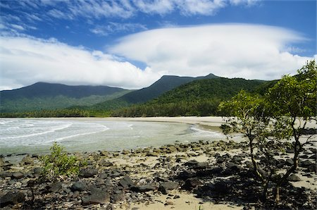 queensland - Myall Beach, Daintree National Park, Queensland, Australia Stock Photo - Rights-Managed, Code: 700-05609671