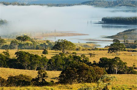 queensland - Farmland and Lake Tinaroo, Atherton Tablelands, Queensland, Australia Stock Photo - Rights-Managed, Code: 700-05609687