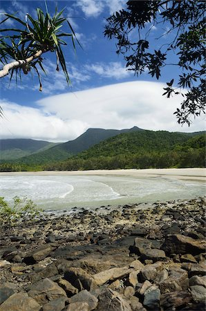 queensland - Myall Beach, Daintree National Park, Queensland, Australia Stock Photo - Rights-Managed, Code: 700-05609682