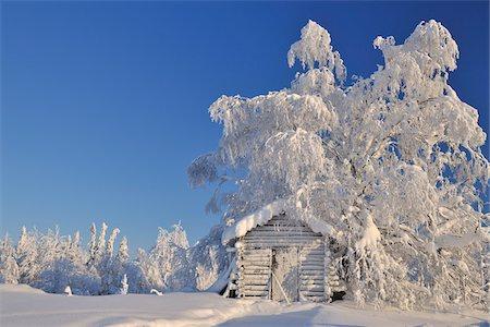 Log Cabin in Winter, Kuusamo, Northern Ostrobothnia, Finland Stock Photo - Rights-Managed, Code: 700-05609961