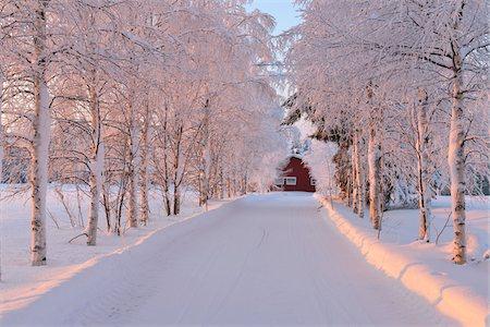 Winter Road, Kuusamo, Northern Ostrobothnia, Finland Stock Photo - Rights-Managed, Code: 700-05609963