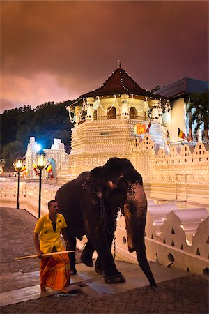 Man with Elephant in front of Temple of the Tooth during Kandy Perehera Festival, Kandy, Sri Lanka Stock Photo - Rights-Managed, Code: 700-05642284