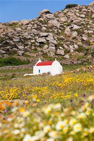 Chapel in Field of Flowers, Mykonos, Cyclades Islands, Greece Stock Photo - Rights-Managed, Code: 700-05653135