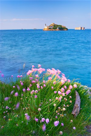 View of Louet Island and Chateau de Taureau, Bay of Morlaix, Finistere, Bretagne, France Stock Photo - Rights-Managed, Code: 700-05803758