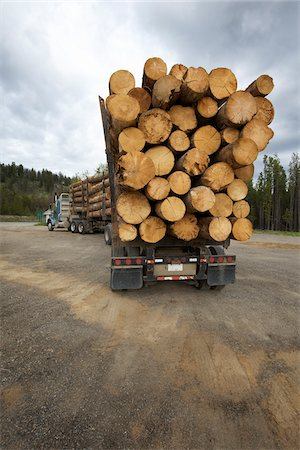 forestry - Logging Truck Stock Photo - Rights-Managed, Code: 700-05837595