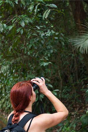 Woman Looking Through Binoculars in Forest, Rio de Janeiro, Brazil Stock Photo - Rights-Managed, Code: 700-05947899