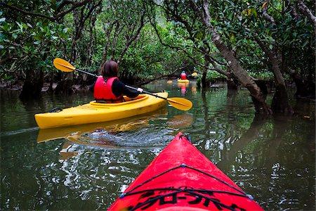 stock picture - Kayaking at Kuroshio No Mori, Mangrove Park, Amami Oshima, Amami Islands, Kagoshima Prefecture, Japan Stock Photo - Rights-Managed, Code: 700-05974003