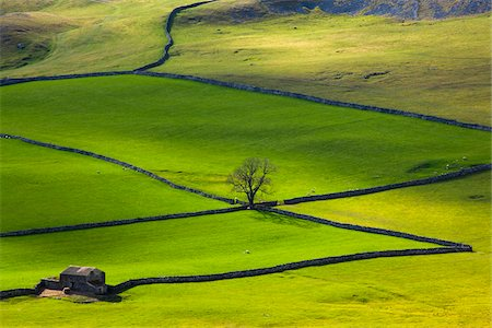 Overview of Fields, Crummack Dale, Yorkshire Dales, North Yorkshire, England Stock Photo - Rights-Managed, Code: 700-06007900